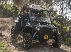 Buggies 4x4 - 5994 offers