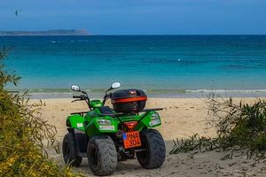 Rent A Buggy - 73934 options