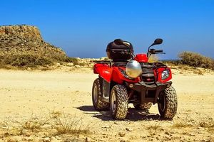 Rent A Buggy - 64637 bestsellers