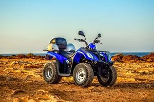 Rent A Buggy - 8582 discounts