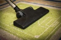 Eco Friendly Carpet Cleaning - 24690 species
