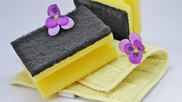 Professional End Of Tenancy Cleaning Services London - 10651 suggestions